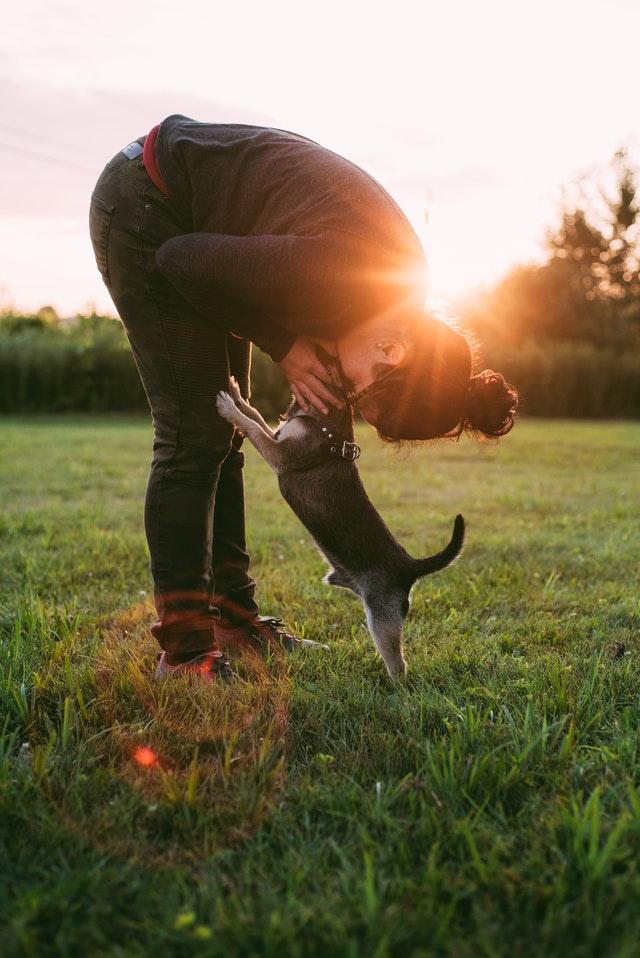 djurkommunikation kurs
